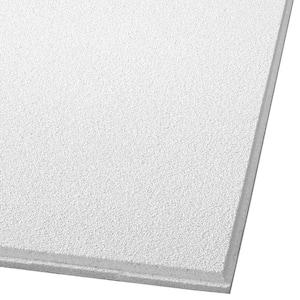 Dune 2 ft. x 2 ft. Tegular Ceiling Panel Ceiling Tile (64 sq. ft./case)