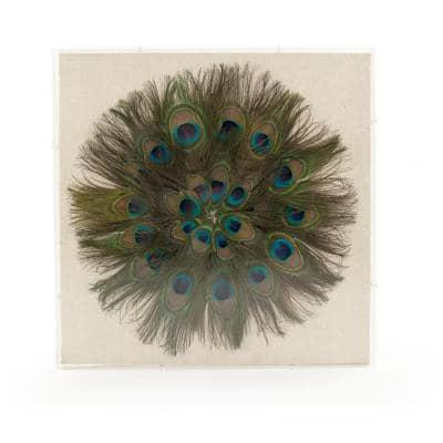 """""""Peacock Feather Wall Art"""" by Zentique"""