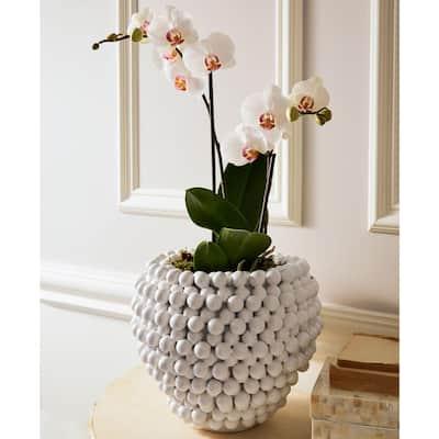 10.25 in. Diameter White Pompom Decorative Ceramic Vase/Planter