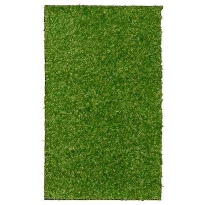 24 in. x 36 in. Indoor/Outdoor Greentic Artificial Grass Turf Puppy Pee Pad