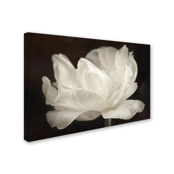 Trademark Fine Art 30 In X 47 In White Tulip Iii By Cora Niele Printed Canvas Wall Art Ali1801 C3047gg The Home Depot
