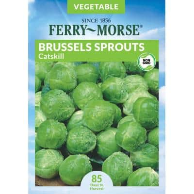 Brussels Sprouts Catskill Seed