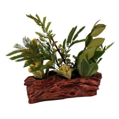7 in. x 3.75 in. x 2.5 in. Redwood Ceramic Wood Plant Pot - Unique Succulent Planter Knotted Log