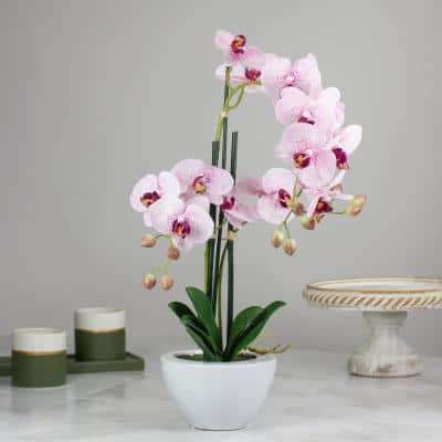 21 in. Pink and White Artificial Orchid Plant in a White Pot