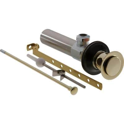 Bathroom Faucet Drain Assembly in Polished Brass