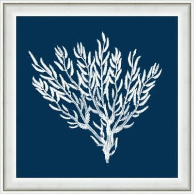 """18 in. x 18 in. """"Navy Coral II"""" Framed Giclee Print Wall Art"""