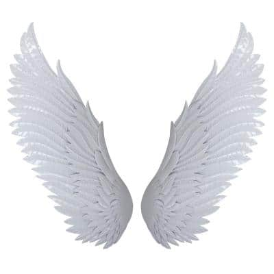 Chic White Wings Mixed Metal Media Wall Art