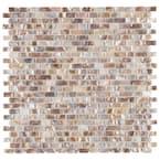 Conchella Subway Perla 11-3/4 in. x 11-3/4 in. x 2 mm Natural Seashell Mosaic Tile