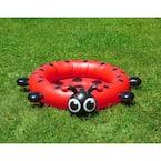 Ladybug 37 in. Dia Circle 7.5 in. Deep Kiddie Swimming Pool