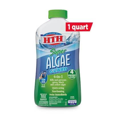 1 Qt. Pool Super Algae Guard 60