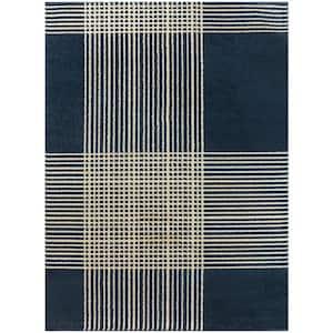 Ian Blue 5 ft. x 7 ft. Plaid Area Rug
