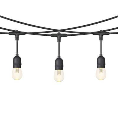 Outdoor 48 ft. Plug-In S14 Bulbs RGB String Light with Remote Control