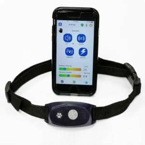 Bluefang 5-in-1 Electronic Fence Remote Trainer Bark Collar