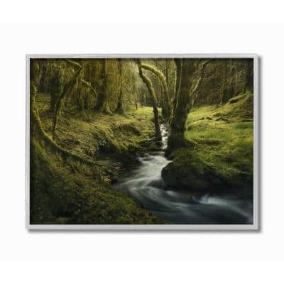 """16 in. x 20 in. """"Mossy Creek Forest Landscape Photograph"""" by Enrico Fossati Framed Wall Art"""