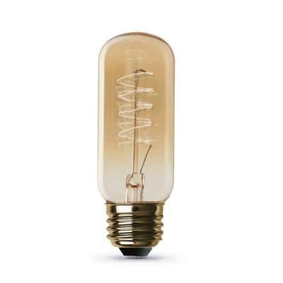 40-Watt T14 Dimmable Incandescent Amber Glass Vintage Edison Light Bulb with Spiral Filament Soft White