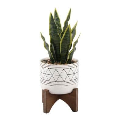 12 in. Faux Snake Plant in Black GEO Paint White Ceramic Pot on Wood Stand