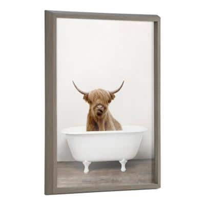 Blake Highland Cow in Tub Color 24 in. x 18 in. by Amy Peterson Framed Printed Glass Wall Art