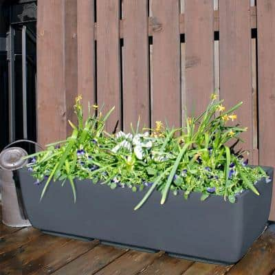 36 in. x 15 in. Graphite Plastic Window Boxes & Troughs