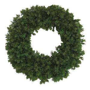 24 in. Juniper Wreath