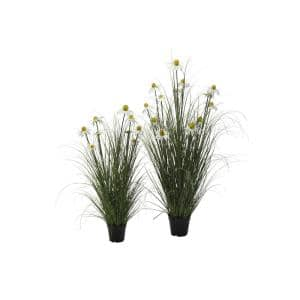 White Daisy in Wild Grass (Set of 2)