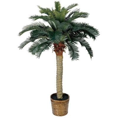 4 ft. Sago Palm Silk Tree