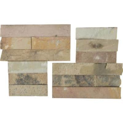 Salvador Fossil Corner 6 in. x 6 in. Natural Sandstone Wall Tile (6 sq. ft. / case)