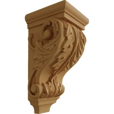 5 in. x 5 in. x 10 in. Unfinished Wood Alder Medium Acanthus Wood Corbel