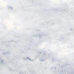 Classic Impressions Carrara Gloss 4 in. x 12 in. Glossy Ceramic Wall Tile (13.33 sq. ft. / Case)