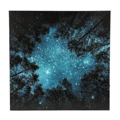 Starry Night Sky Canvas Print Wall Art with LED Lights