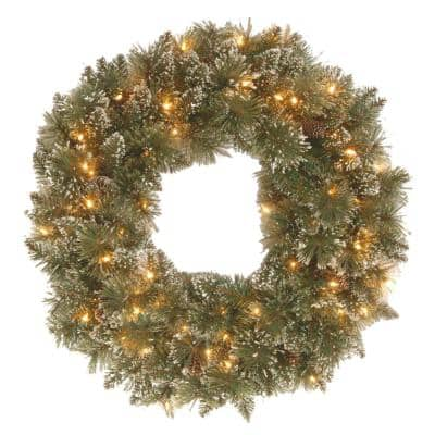 Glittery Bristle Pine 24 in. Artificial Wreath with Battery Operated Warm White LED Lights