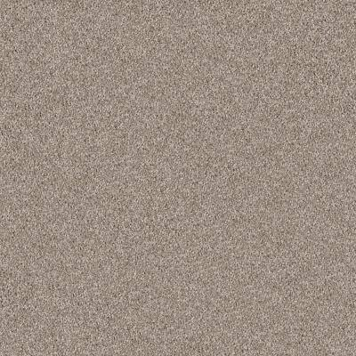 Thrive Suave Brown 24 in. x 24 in. Residential Peel and Stick Carpet Tiles (10 Tiles/Case)