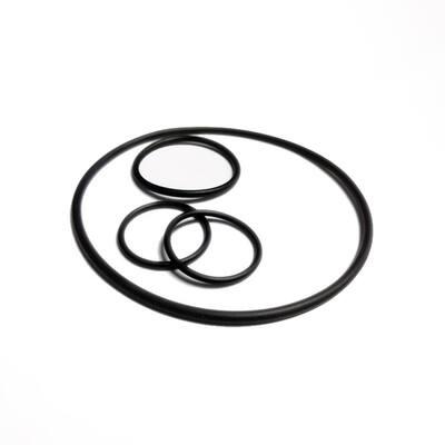 Mini Valve O-Ring Repair Kit