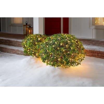 48 in. x 72 in. 150-Light Mini  Clear Net Christmas Lights