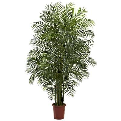 7.5 ft. Areca Palm Tree UV Resistant (Indoor/Outdoor)