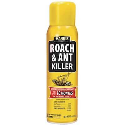 16 oz. 10-Month Roach and Ant Killer Aerosol Spray