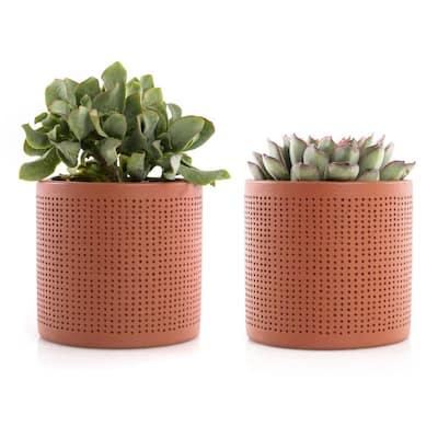 4 in. Assorted Succulent Set in Orange Dot Pot (2-Pack)