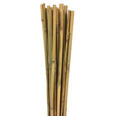 60 in. H Bamboo Garden Stake Support (10 per Bundle)