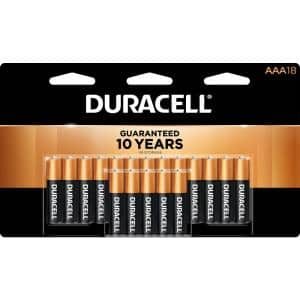 Coppertop Alkaline AAA Battery (18-Pack)