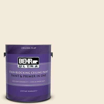 1 gal. #PPU5-10 Heavy Cream Ceiling Flat Interior Paint and Primer in One