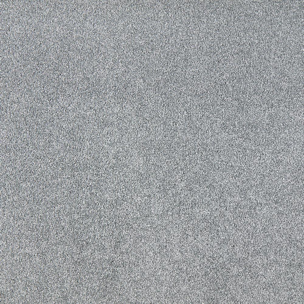 Lifeproof with Petproof Technology Silver Mane I - Color Batik Texture 12 ft. Carpet