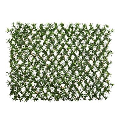 Indoor/Outdoor 39 in. Podocarpus Expandable Fence UV Resistant & Waterproof