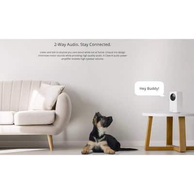 1080p Pan/Tilt/Zoom Indoor Wireless Wi-Fi Smart Home Camera Night Vision 2Way Audio Alexa/Google Ready 32GB Card