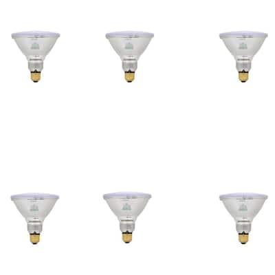 60-Watt Halogen PAR38 Flood Light Bulb (6-Pack)