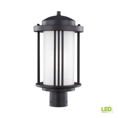 Crowell 1-Light Outdoor Black Post Light with LED Bulb