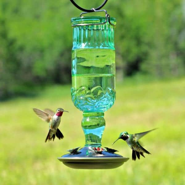 More Birds Hummingbird Feeder Vintage Antique Glass Bottle Copper 20 fl.oz.