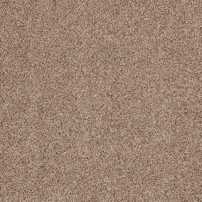 Gemini I-Color Tudor Brown Textured 12 ft. Carpet