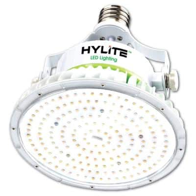 60W Lotus LED Lamp 250W HID Equivalent 5000K 8400 Lumens Ballast Bypass 120-277V E39 Base IP 65 UL & DLC Listed