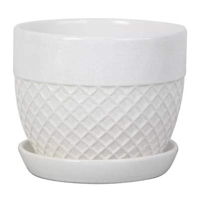 6 in. White Acorn Ceramic Planter