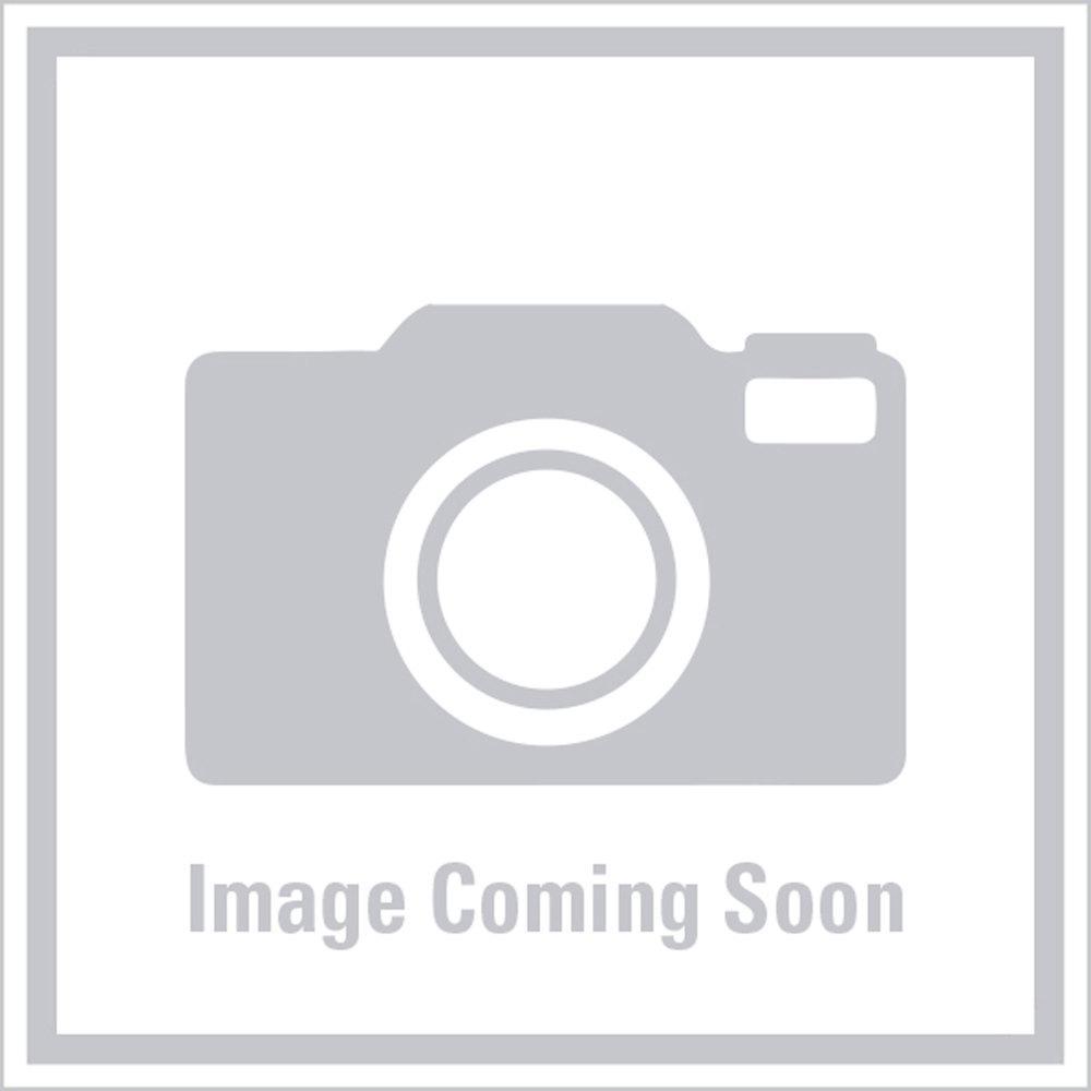 Water Heater DSI-LP Gas/Electric SW10DEM - 10 Gallon