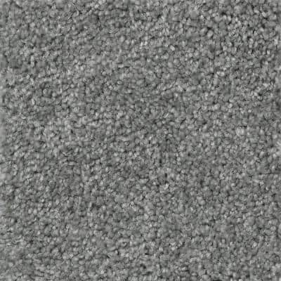 Lucky Penny - Color Charmed Texture 12 ft. Carpet